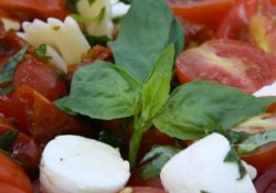 salade de pates
