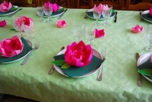 pliage de seviette lotus