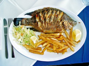 tilapia consommation
