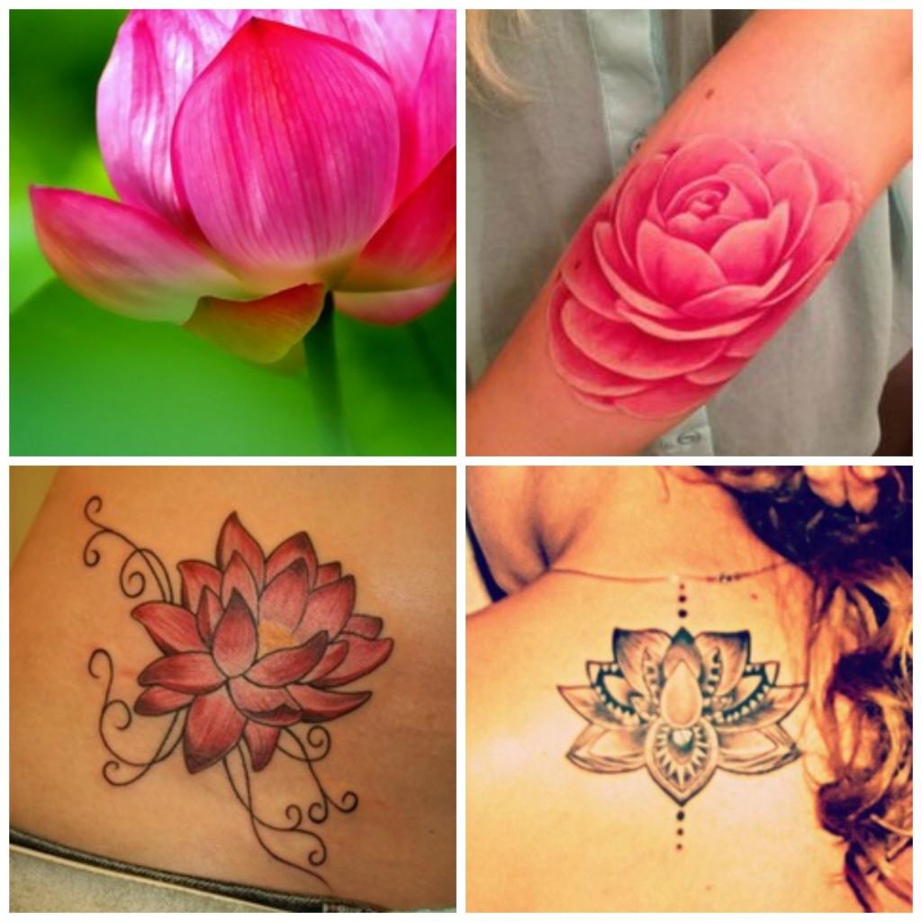 tatouage fleur de lotus amour calme puret madame web. Black Bedroom Furniture Sets. Home Design Ideas